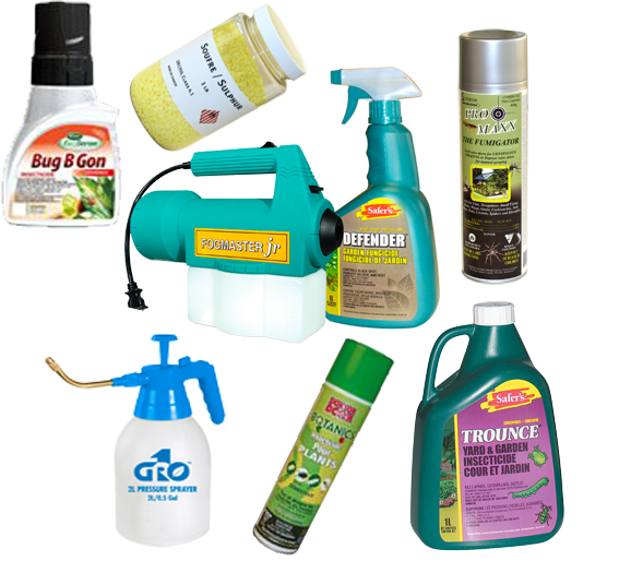 Foliar Spray, insecticide, fungicides